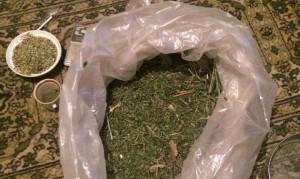 Стоп, наркотик: Полиция провела рейды – задержаны трое запорожцев-наркодилеров