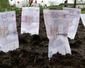 Земельщики рассказали, в каком районе области арендовать землю дороже всего