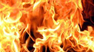 У Запорізькій області за добу сталося 9 пожеж в природних екосистемах