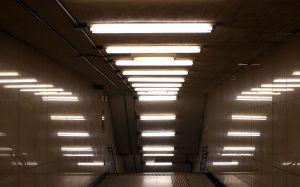 Запорожцев призывают избавиться от «ядовитых» лампочек