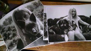 Запорожцам с помощью фотовыставки расскажут о людях, приютивших бездомных собак