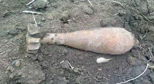 Во время полевых работ жители запорожского села обнаружили несколько мин и гранат