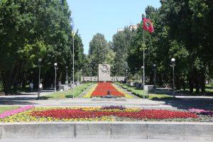 Запорожские коммунальщики высадят на Аллее Боевой Славы 18 тысяч цветов