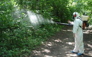 В Бердянске с комарами будут бороться с помощью 230 тысяч гривен