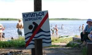 В Бердянске в Азовском море специалисты СЭС обнаружили холероподобный вибрион