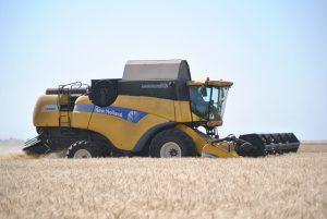 Запорожские аграрии планируют собрать 2 млн. тонн зерна