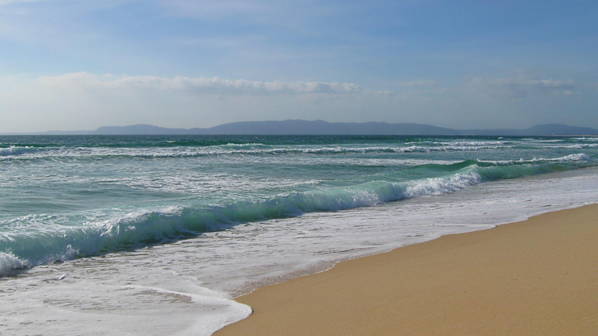 На запорізькому курорті на пляжі виявили тіло чоловіка
