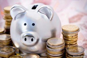 За 5 месяцев плательщики перечислили в госбюджет полмиллиарда гривен