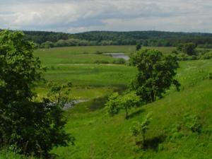 Запорожцы заплатили за землю более 700 миллионов гривен