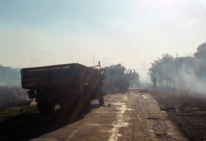 В Запорожской области произошло смертельное ДТП (фото)