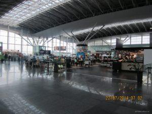 В киевском аэропорту задержали незаконного запорожского иммигранта
