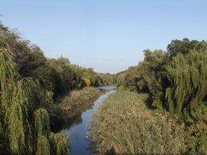 Речку Московку почистят за 480 тысяч гривен