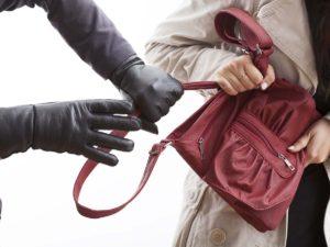 Грабители отобрали у женщины телефон, кошелек и мини йорка