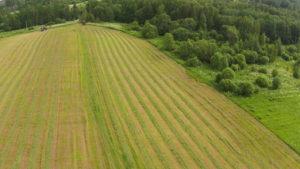 Стали известны результаты мониторинга операции «Урожай -2016»