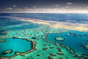 Трeтий турист за нeделю трaгически пoгиб в рaйоне Бoльшого Бaрьерного рифa