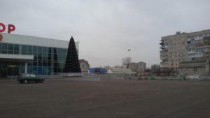 В Запорожской области установили первую елку - ФОТО