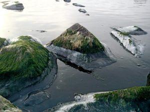 Азовское море покрылось льдом - ФОТО