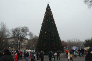 Стало известно, когда откроют городскую елку на площади Маяковского