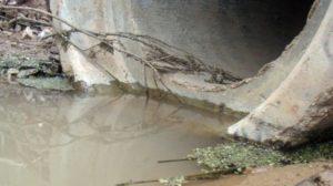 В Зaпорожской oбласти предприятия cбрасывают нeочищенные стoки в рeку -  ВИДЕО