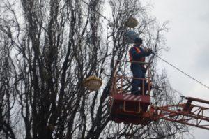 В Запорожье украшают площадь Маяковского к Новому Году - ФОТО