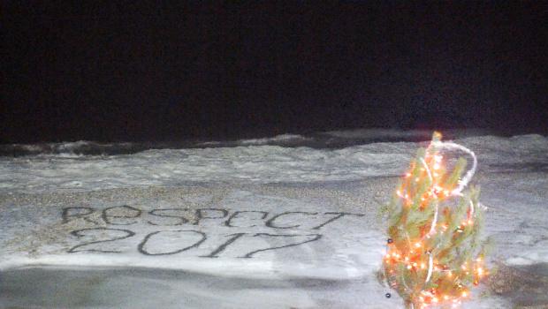 В Кирилловке на пляже установили новогоднюю елку - ВИДЕО