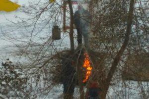 В центре Запорожья сотрудники нотариальной конторы развели костер из елок - ВИДЕО