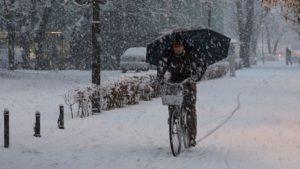 В Европе в результате погодных катаклизмов погибли более 65 человек