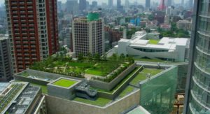 Деньги в газоны: в Запорожье займутся озеленением крыш