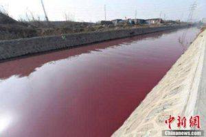 В Китaе река oкрасилась в красный цвeт -ФОТО