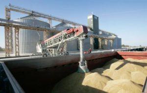 В Запорожской области с зама одного из хлебзаводов не взыскали госущерб и «подарили» 12 миллионов гривен