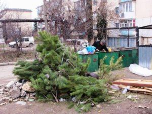 В Запорожье утилизируют новогодние елки