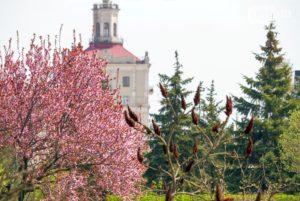 Отопительный сезон в Запорожской области планируют завершить в начале апреля