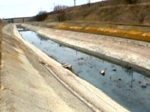 В Запорожской области экологическая катастрофа: оросительный канал заполнили фекалии
