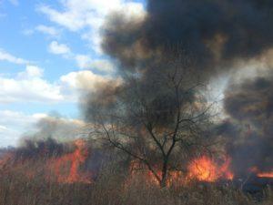 В Запорожье произошел масштабный пожар на Правом берегу – ФОТО, ВИДЕО (ОБНОВЛЕННО)