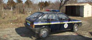 В Запорожской области женщина, выгуливая собаку, обнаружила труп мужчины - ФОТО