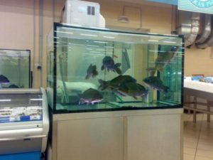 В Запорожской области парень на спор искупался в аквариуме супермаркета