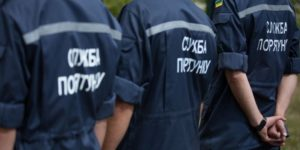 В Запорожской области старый тополь едва не упал на школу