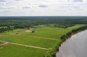 В Запорожской области после смерти фермера продолжали незаконно использовать землю в 27 гектаров