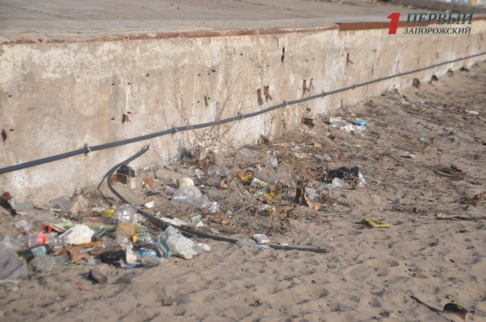 В Запорожье часть Центрального пляжа на Набережной погрязла в мусоре - ФОТО