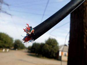В Запорожье полицейские отпустили воров телефонного кабеля до следующей кражи - ВИДЕО