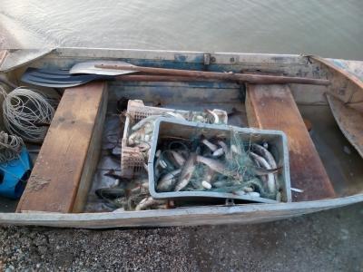 В Запорожской области задержали троих браконьеров с уловом на 280 тысяч гривен - ФОТО