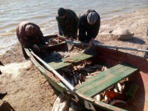В Запорожской области рыбак-браконьер наловил рыбы на 150 тысяч гривен