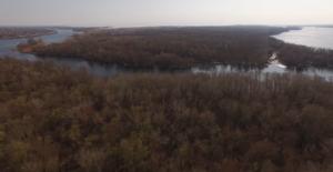 Запорожские плавни сняли с высоты птичьего полета - ВИДЕО