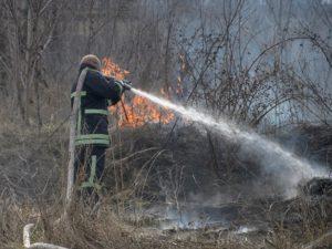 Накануне Пасхи произошел пожар на острове Хортица