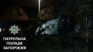 В Запорожье пьяный водитель на BMW врезался в дерево - ФОТО