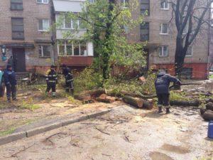 Запорожские спасатели уже убрали 30 упавших деревьев - ФОТО