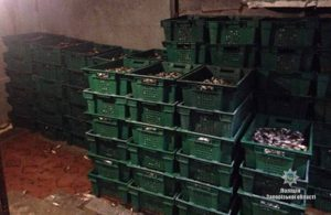 В Запорожской области задержали судно браконьеров с 2 тоннами улова - ФОТО