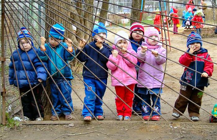 В Запорожье сократят очередь в детские сады