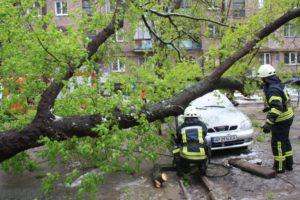 В Запорожье спасатели ликвидируют последствия непогоды - ФОТО