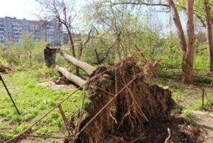 В Запорожье все еще продолжают ликвидировать последствия стихии - ФОТО